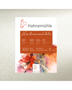 WATERCOLOUR HAHNEMUHLE 300 50X65 G.FINE 42